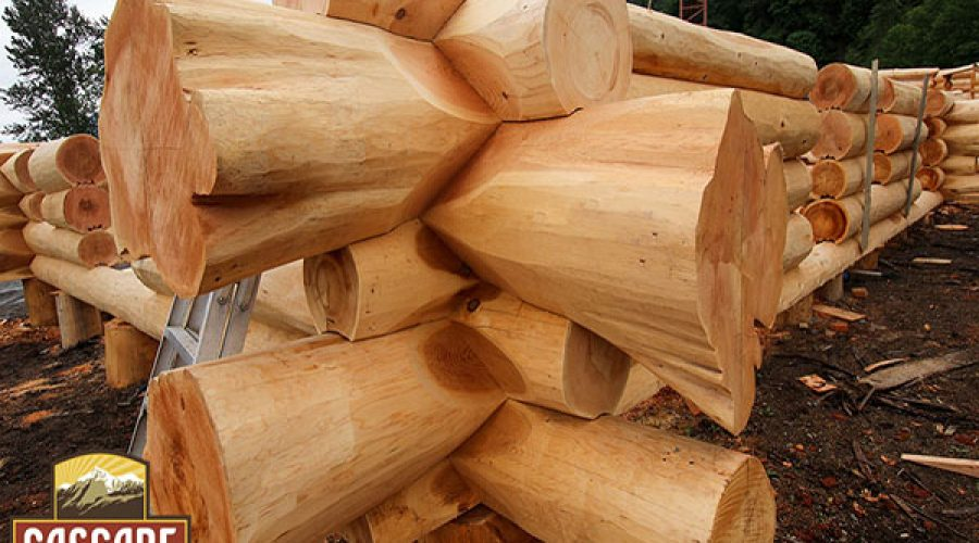 Western Red-cedar Log Flares – News