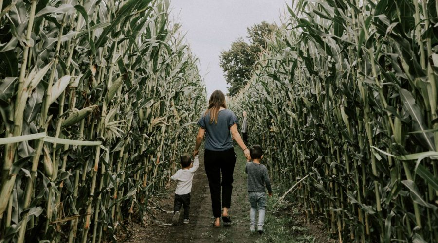 EXPERIENCE FAMILY FUN THIS FALL IN CHILLIWACK